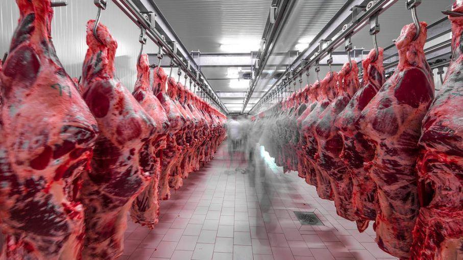 La carne contaminada llegó hace días a la ciudad china de Nanjing.