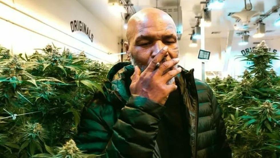 El ex boxeador trabaja en un proyecto vinculado al cannabis.